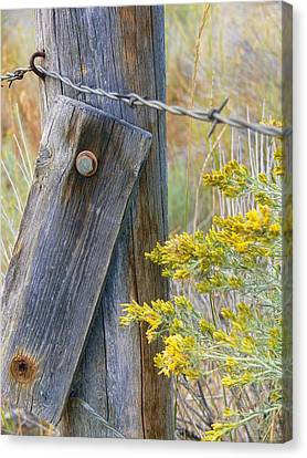 Rustic Fence And Wild Flowers Montana Canvas Print by Jennie Marie Schell