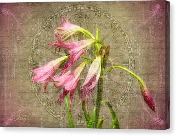 Rustic Lilies Canvas Print