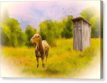 Rustic Pasture Canvas Print by Mary Timman