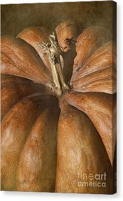 Rustic Pumpkin Canvas Print