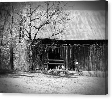 Rustic Tennessee Barn Canvas Print by Phil Perkins
