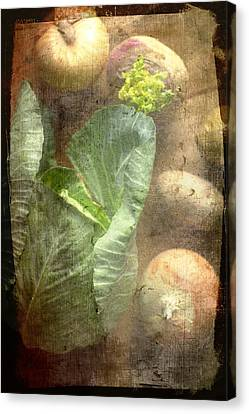 Rustic Vegetable Fruit Medley IIi Canvas Print by Suzanne Powers