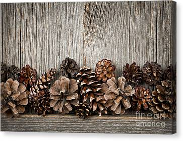Rustic Wood With Pine Cones Canvas Print
