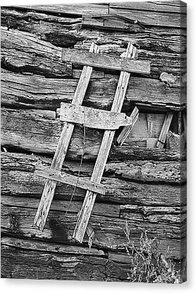 Rustic Wooden Ladder Nailed To Side Of Log Cabin Canvas Print by Donald  Erickson