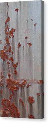 Rusty Abstract Canvas Print by Jani Freimann