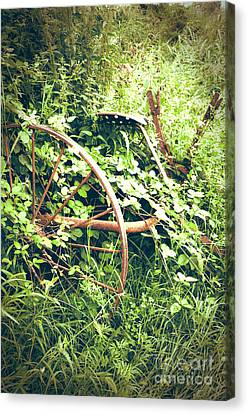 Rusty Antique Machinery Canvas Print by Perry Van Munster
