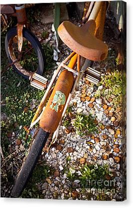 Rusty Bike Bumper Canvas Print by Sonja Quintero