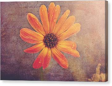 Rusty Canvas Print by Faith Simbeck