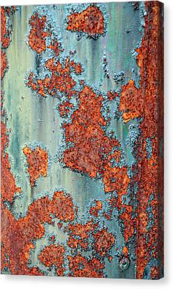 Turquoise And Rust Canvas Print - Rusty by Geraldine Alexander