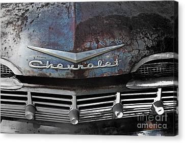 Rusty Impala Canvas Print by Deborah Montana
