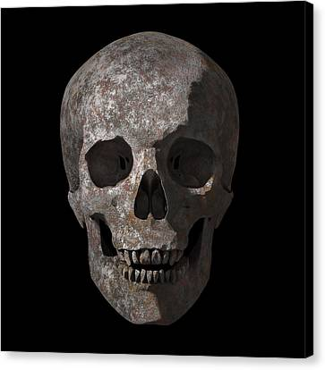 Rusty Old Skull Canvas Print