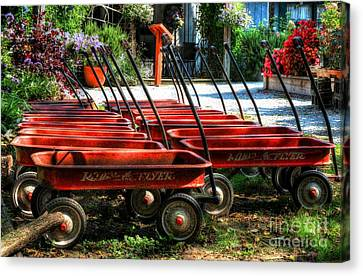 Rusty Old Wagons Canvas Print by Mel Steinhauer