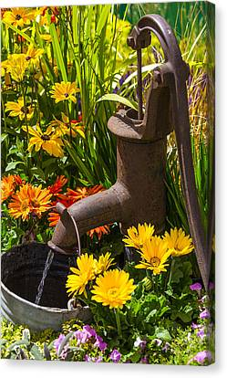 Rusty Old Water Pump Canvas Print by Garry Gay
