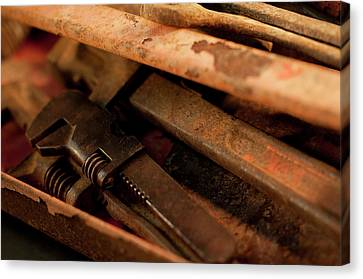 Rusty Toolbox And Tools Canvas Print by Wilma  Birdwell