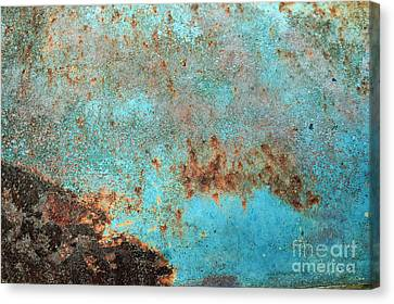 Rusty Weather Canvas Print by Deborah Montana