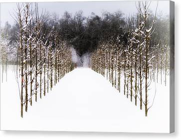 Canvas Print featuring the photograph Ruths Winter Scene by Russell Styles