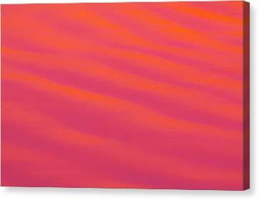Rzp-520 Canvas Print by Ronald Zincone/vwpics