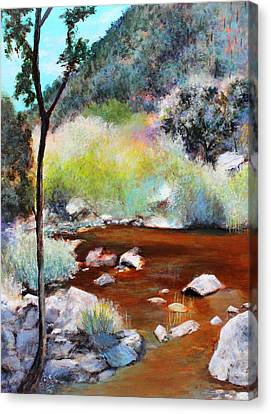 Sabino Canyon Scenes 2 Canvas Print by M Diane Bonaparte