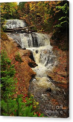 Sable Falls Canvas Print by Terri Gostola