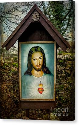 Sacred Heart Of Jesus Canvas Print
