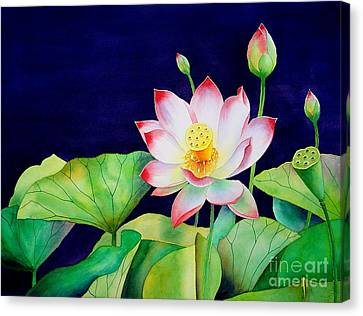 Sacred Lotus Canvas Print by Robert Hooper