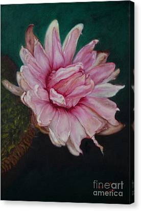 Canvas Print featuring the painting Sacred Red Lotus by Mukta Gupta