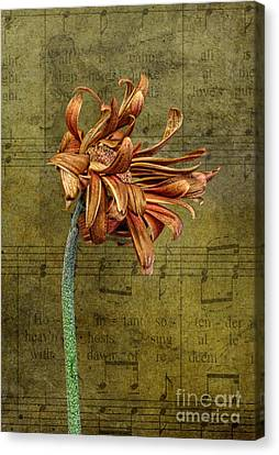 Canvas Print featuring the digital art Sad Song by Shirley Mangini