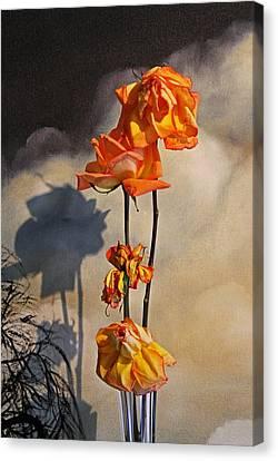 Sad To See You Go Canvas Print by John Stuart Webbstock