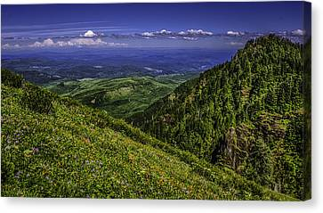 Saddle Mt. Canvas Print by Colby Drake