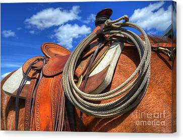 Saddle Up Canvas Print by Bob Christopher