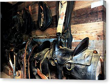 Saddles 103 Canvas Print