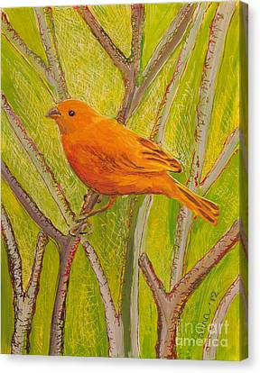 Canvas Print featuring the painting Saffron Finch by Anna Skaradzinska