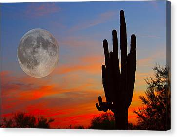Saguaro Full Moon Sunset Canvas Print by James BO  Insogna