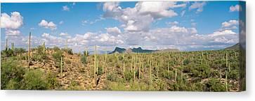 Grey Clouds Canvas Print - Saguaro National Park Tucson Az Usa by Panoramic Images