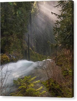 Sahalie Falls Mist Canvas Print by Leland D Howard