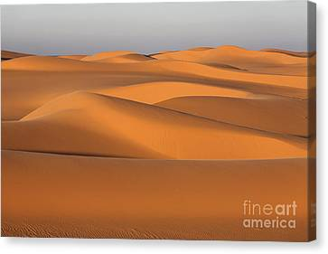 Sahara Desert Dunes Canvas Print by Robert Preston