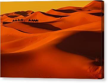 Sahara Story Canvas Print by Midori Chan
