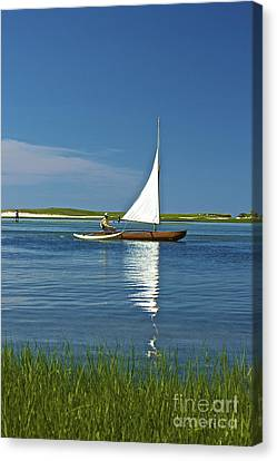 Sail Canvas Print by Amazing Jules