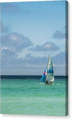 Sail Boat On The Ocean Canvas Print by Shelby  Young