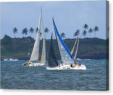 Sail Boat Race Canvas Print by Bonita Hensley