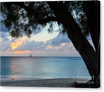 Sail Into The Sunset Canvas Print by Karen English