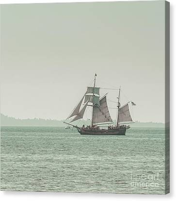 Sail Ship 2 Canvas Print by Lucid Mood