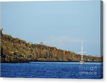 Sailboat Along Island Coastline Canvas Print by Sami Sarkis