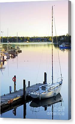 Sailboat At Sunrise Canvas Print by Elena Elisseeva