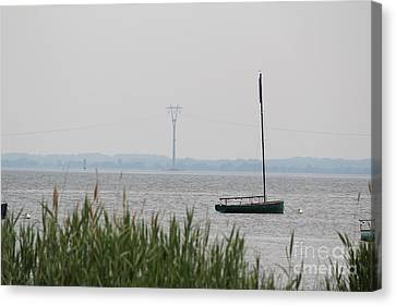 Sailboat Canvas Print