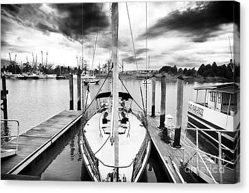 Sailboat Docked Canvas Print by John Rizzuto