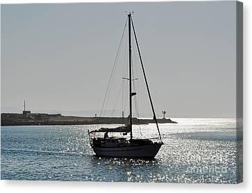 Sailboat Heading Home Canvas Print by Susan Wiedmann