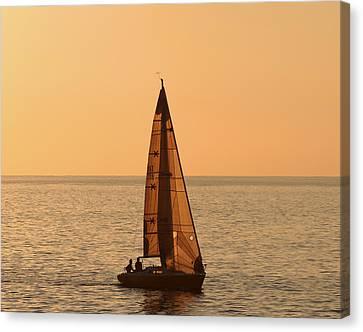 Sailboat In Hawaii Canvas Print by Kim Hojnacki