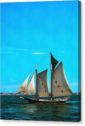 Sailboat In The Bay Canvas Print by Mick Flynn