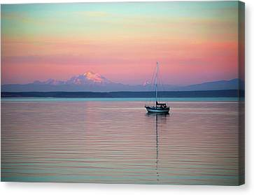 Sailboat In The Sunset. Canvas Print